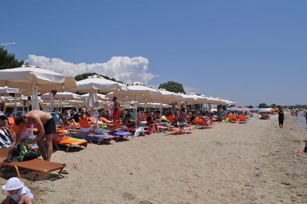 Beach during summer and beach bars.
