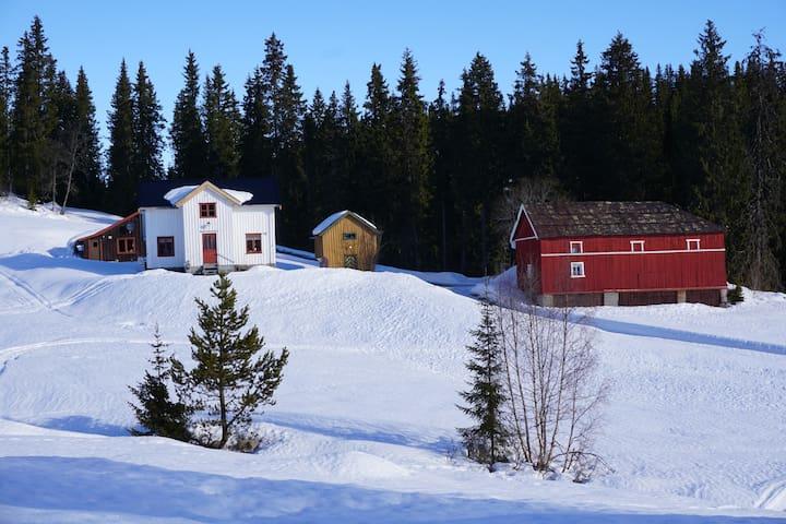 Hus i Øyfjell, nær Rauland i Telemark - Vinje - Rumah