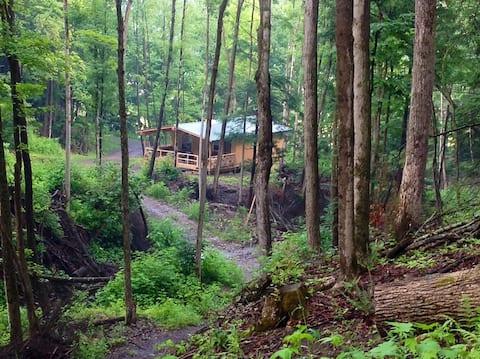 Cabin Creek Getaway (Letchworth) Waterfalls/Forest