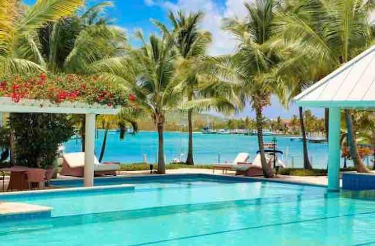 Luxury Yacht Club Marina & Ocean View Turtle Cove