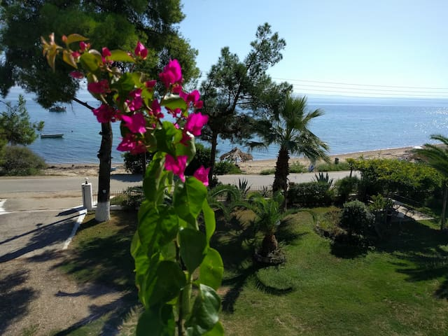 Big Apartment (30m from the beach) Chalkidiki