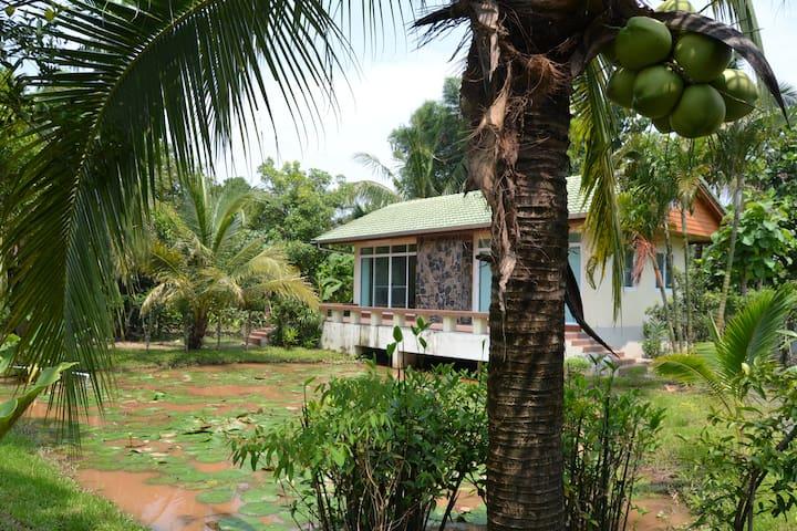 Lotus House - Tambon Mae Sa - Rumah Tamu
