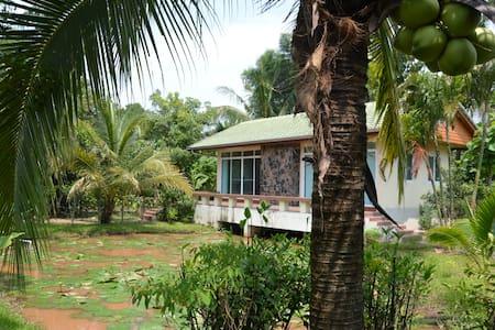 Lotus House - Tambon Mae Sa - Pensió