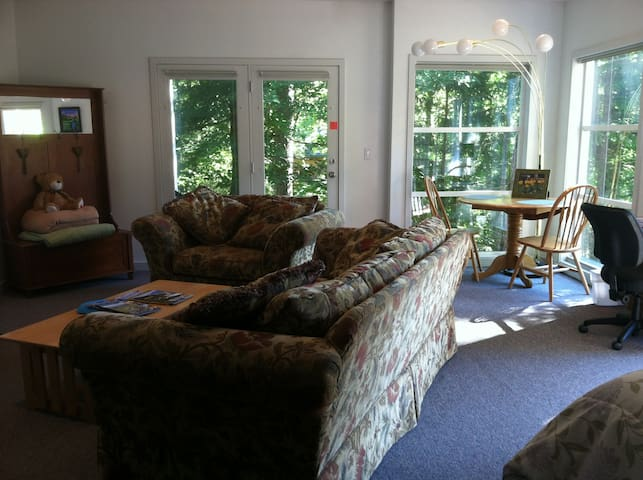 Private, Spacious, Studio, Close In - Corvallis - Daire