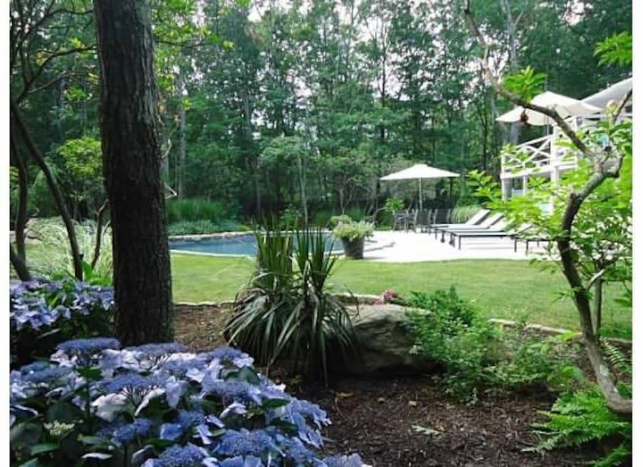 Free Form Pool & Zen Gardens