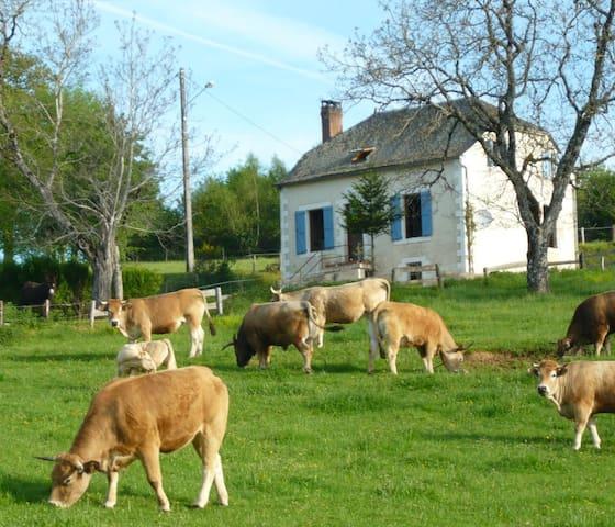 Gîte Rural de Charme en Corrèze - Saint-Bonnet-Elvert - Casa