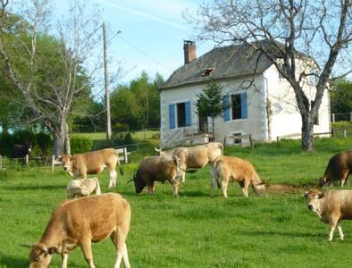 Gîte Rural de Charme en Corrèze - Saint-Bonnet-Elvert - Rumah