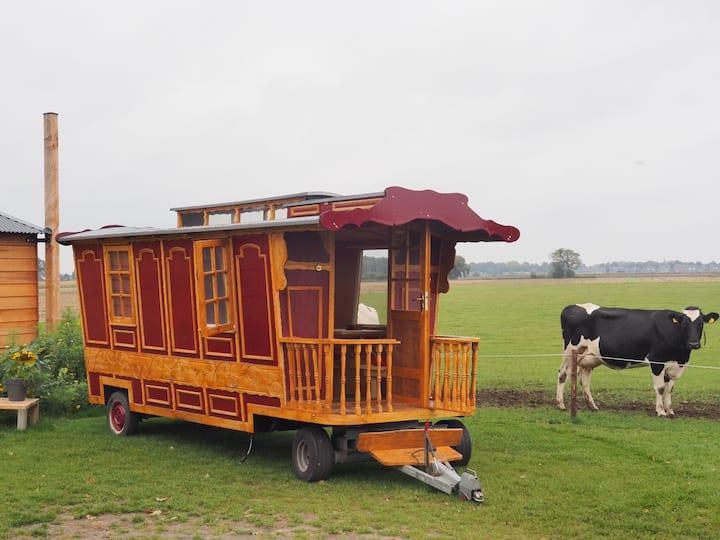 Origineel slapen in een pipowagen met kingsize bed