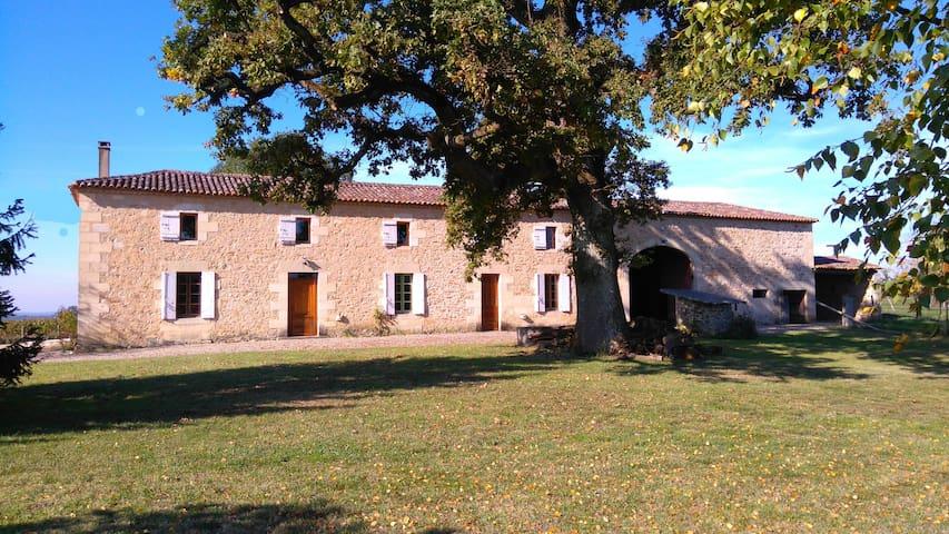 Maison, piscine et vignes près de St Emilion
