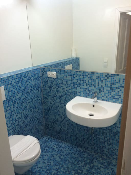 Blue bathroom with shower, lavatory and toilet