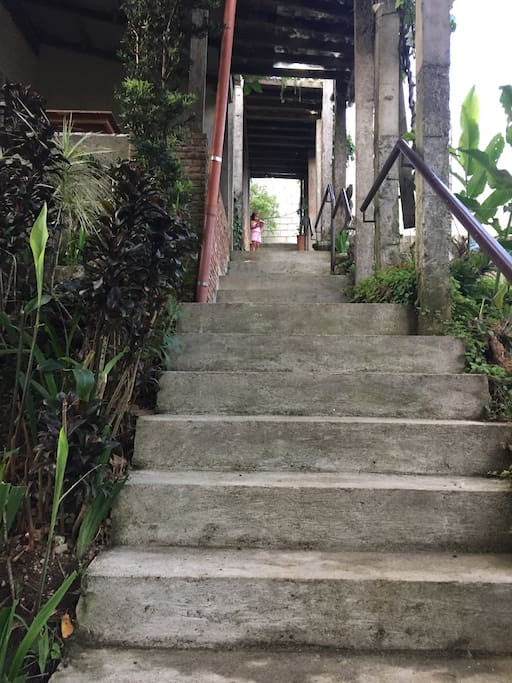 Stair to family cottages