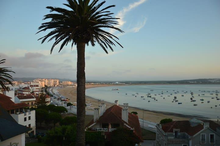 Palm Tree House - S.Martinho do Porto