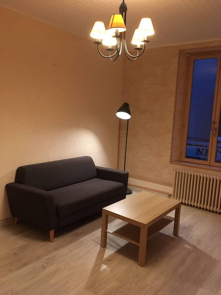 Appartement lumineux hyper centre à Dammartin en G