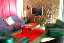 Shared space : living room / espace commun: le salon