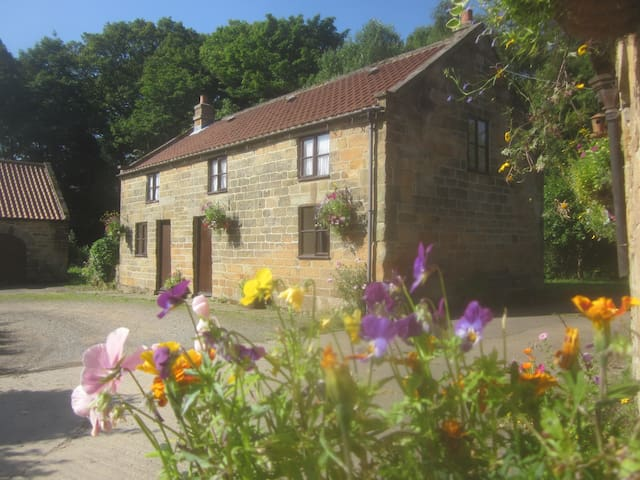 Forge Cottage, Raisdale, Chop Gate, N. York Moors - North Yorkshire - House