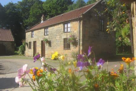 Forge Cottage, Raisdale, Chop Gate, N. York Moors - North Yorkshire - Hus