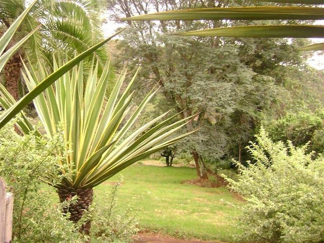 Tigoni Homestay - Nairobi - Casa