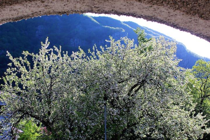 Panorama dall'ingresso in primavera