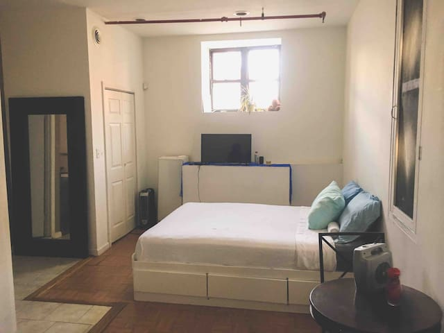 Manhattan-Bronx Large Studio Apt in Mott Haven