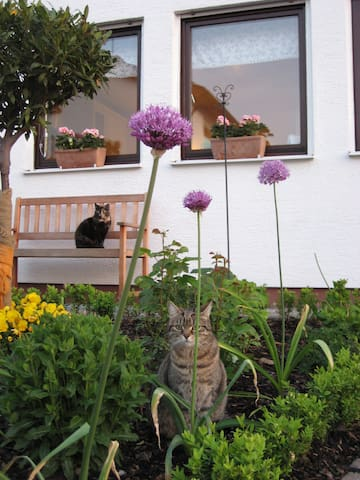 "Ferienwohnung ""Rita's Garten"" - Zweibrücken - Leilighet"