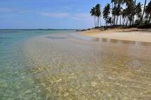 Détendez - vous dans les eaux cristallines de Las Terrenas playa Ballenas.