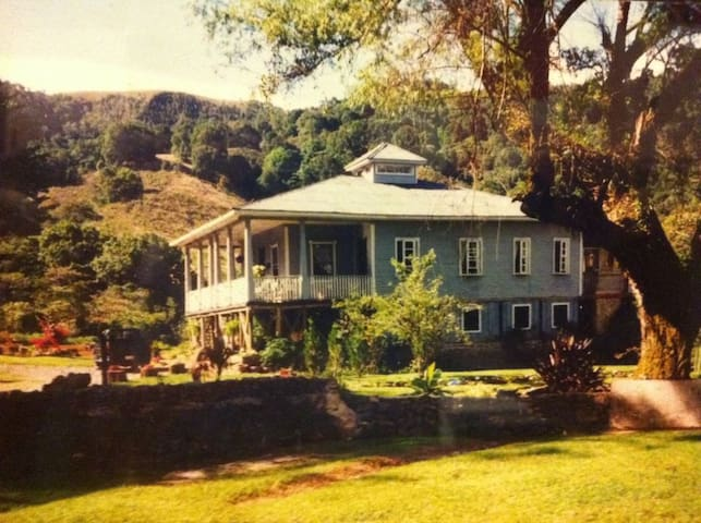 Farm house in Costa Rica - León Cortes - Blockhütte