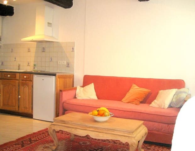 1 bedroom apartment in village - Saint-Paul-en-Forêt - Apartamento