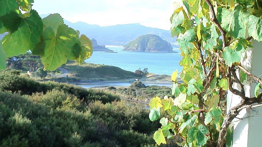 Medlands beach with fabulous ocean  - Great Barrier Island - Casa