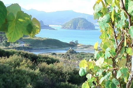 Medlands beach with fabulous ocean  - Great Barrier Island - Haus