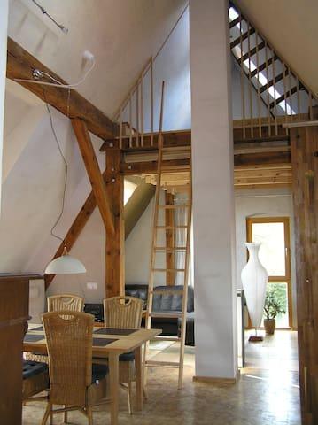 Sonnendurchflutetes Loft im Grünen - Biesenthal - Çatı Katı