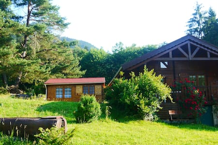 Chalet Vosges   - Luvigny  - Chalet