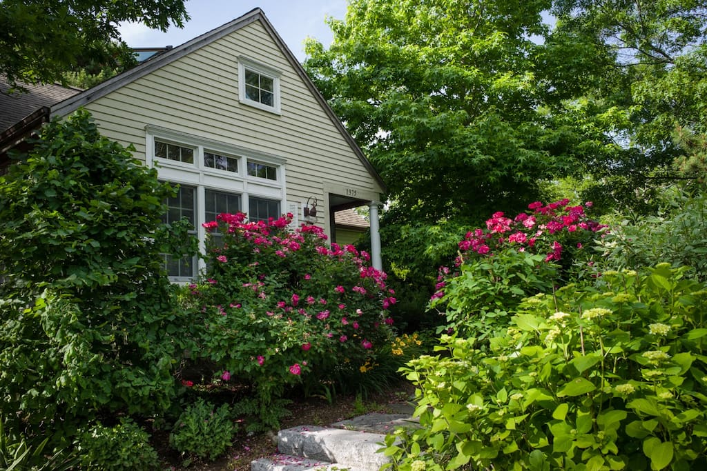 Charming airy cape cod getaway case in affitto a for Affitto cabina cape cod