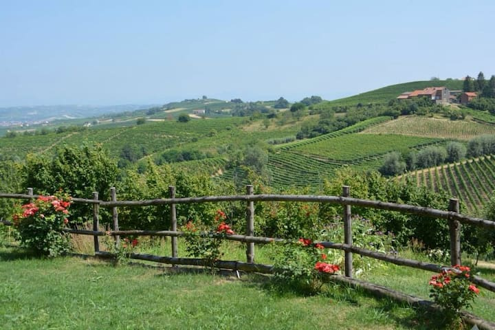 Vineyards, Thermae and Relax - Acqui Terme - Appartement
