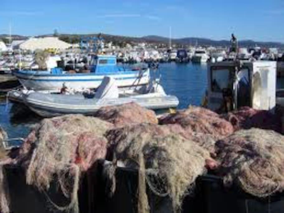 Porto di Santa Marinella - Barche dei pescatori