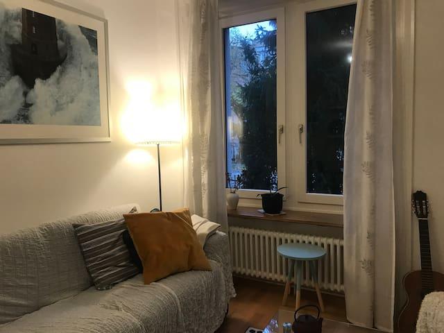 Zimmer mit Terrasse an zentraler Lage in Zürich