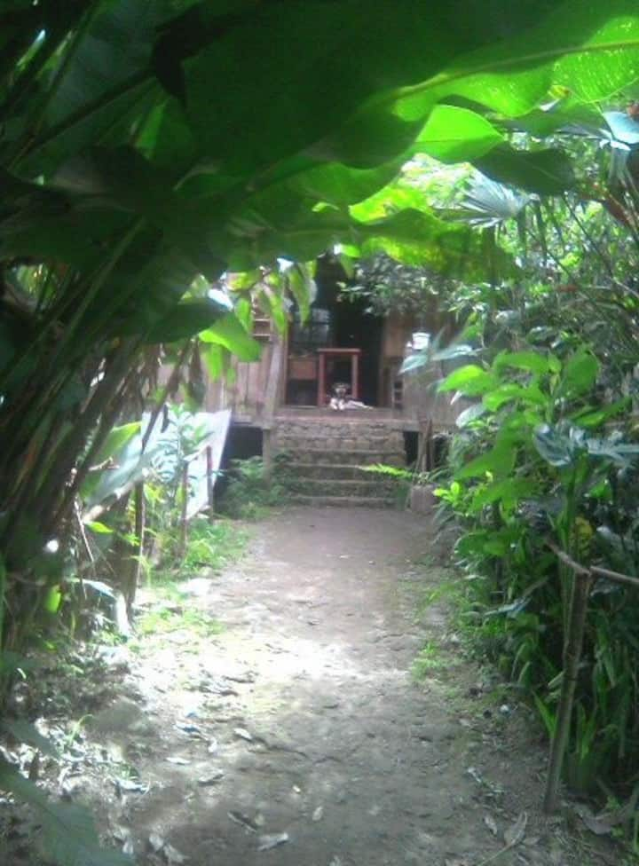 Habitaciones en Un rincón hermoso más, entre otros