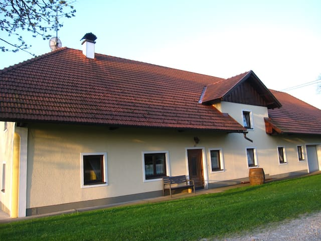 Calm and traditional farm house flat near highway - Wallern an der Trattnach - Kondominium