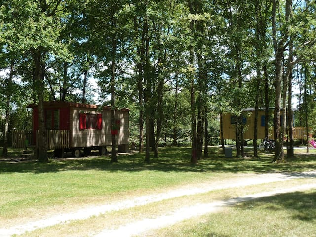 roulotte proche châteaux  et zoo de beauval - Vernou-en-Sologne - Other