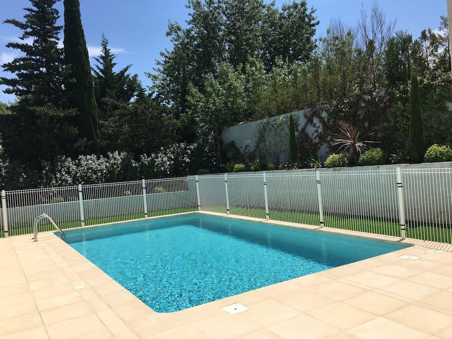 piscine et verdure