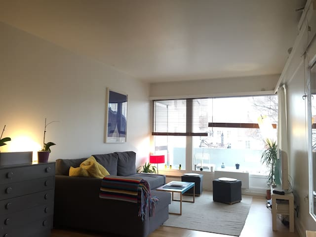Cozy apartment in city center - Oslo - Appartement
