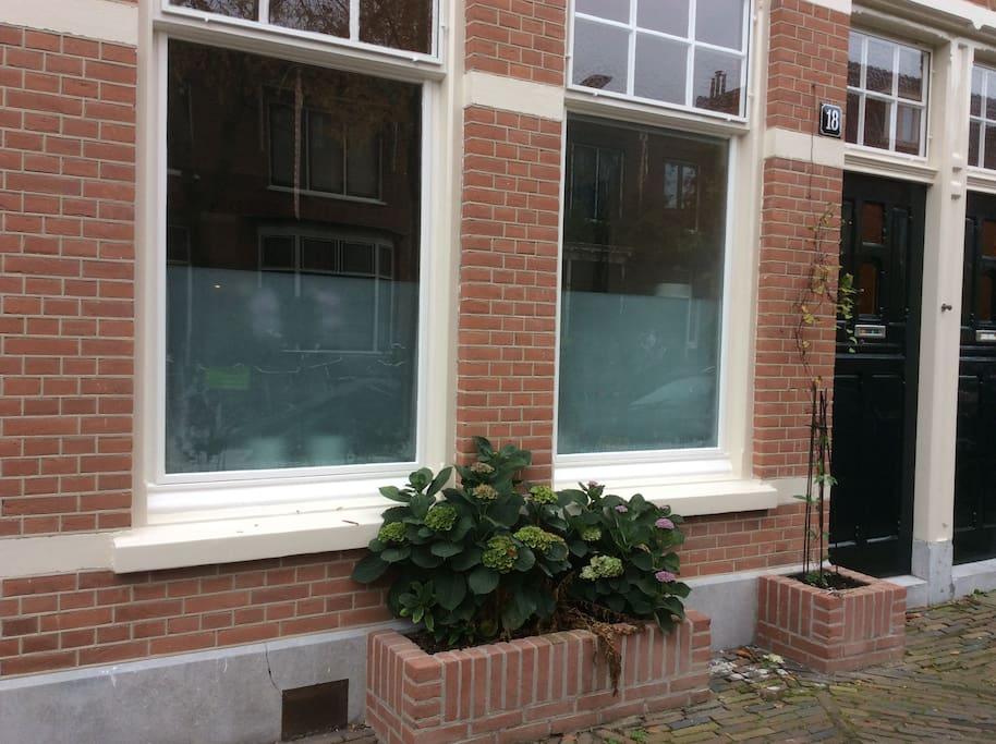 Windows facing street