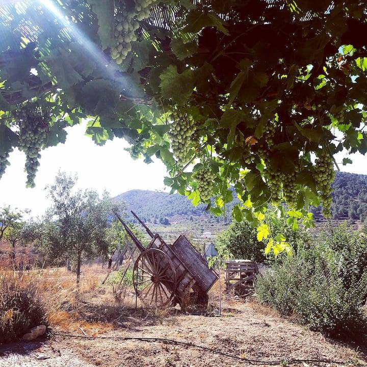 Casa Alma  - Spanish rural charm