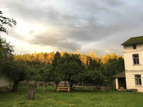 Homestead with alpaca treks & lakeside yoga deck