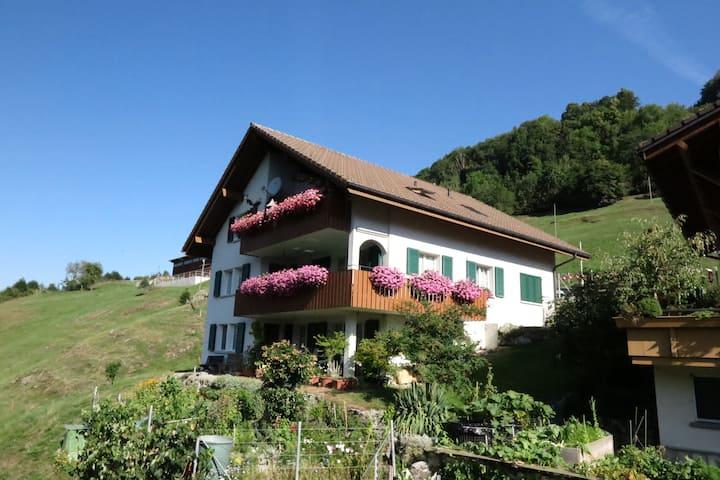 Ferienwohnung Husmatt 6434 Illgau CH