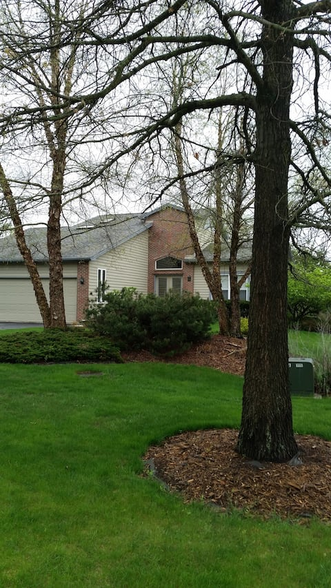 Front elevation and front yard.