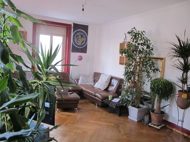 Nice Flat in Central Location - Winterthur - Lägenhet