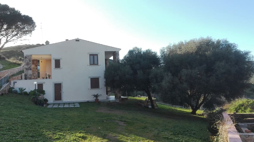 B&B - Camera + bagno Budoni-Maiorca - Budoni - Bed & Breakfast