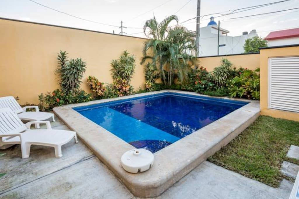 Backyard has a large pool with loungers