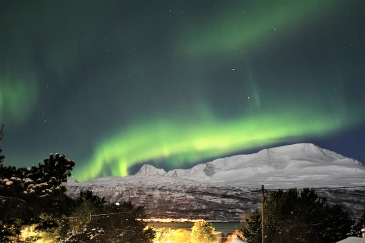 A cosy place for your Northern Norway adventures!