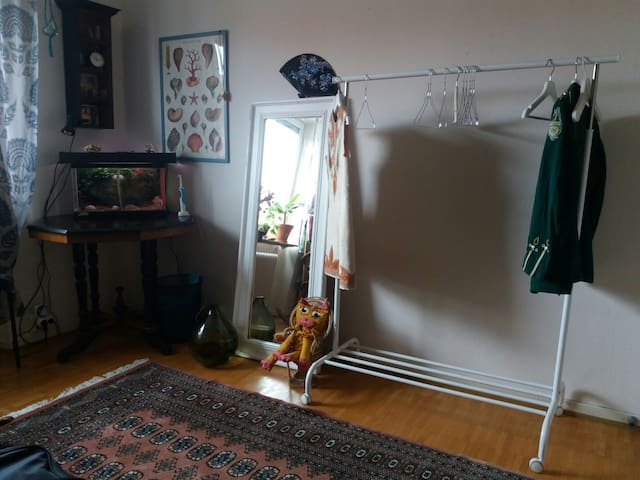 another angle of the guestroom! place to hang clothes if you wish.